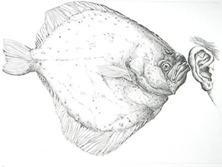 Günter Grass artwork called The Flounder, showing fish and human ear.